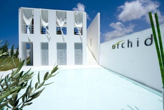 Orchid Beach Resort