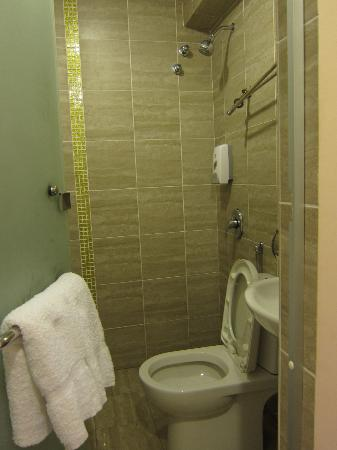 One Avenue Hotel: Shower, toilet, sink behind the frosted glass door