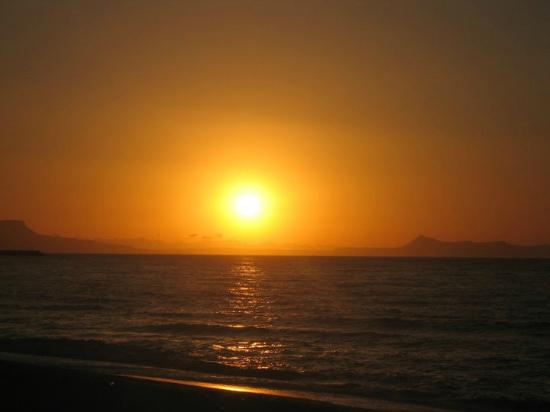 Summer Dream : sunset at the beach