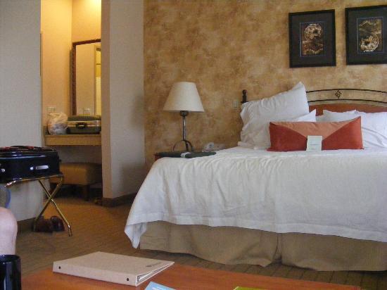 Hilton Garden Inn Phoenix Airport: comfy bed