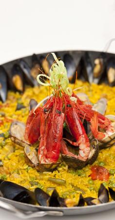 Terra Wine Restaurant : cucine