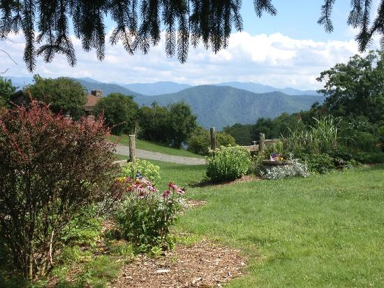 The Cataloochee Ranch : view from the patio (where meals are served, if not inside)