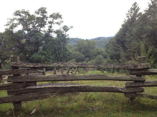 The Cataloochee Ranch: the trails had some great views