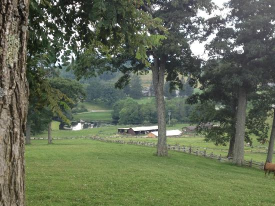 The Cataloochee Ranch : view of the grounds from another trail, near the horse barn