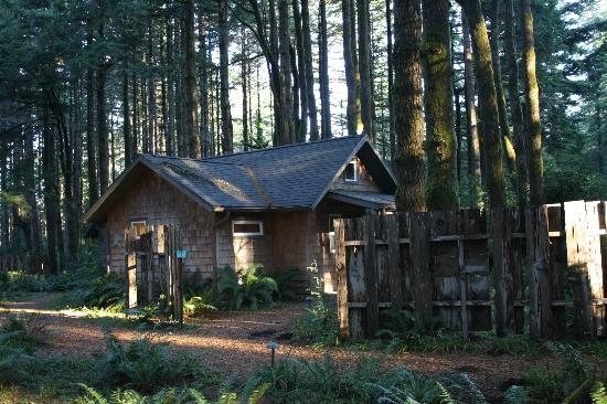 WildSpring Guest Habitat: Rosslyn Cabin