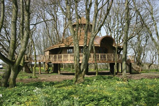Ackergill Tower: Europe's Largest Treehouse