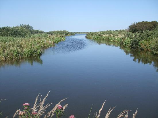 Fletcher Badhotel Callantsoog: Zwanenwater