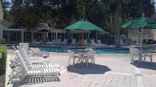 Oak Plantation Resort: Pool area 