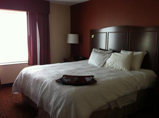 Hampton Inn & Suites Peru: king bed