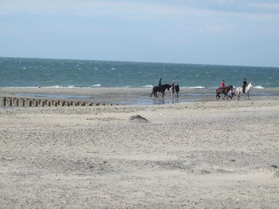 Fletcher Duinhotel Burgh Haamstede: Paardrijden op het strand.