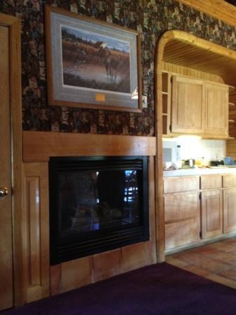 Hibernation Station: kitchen view