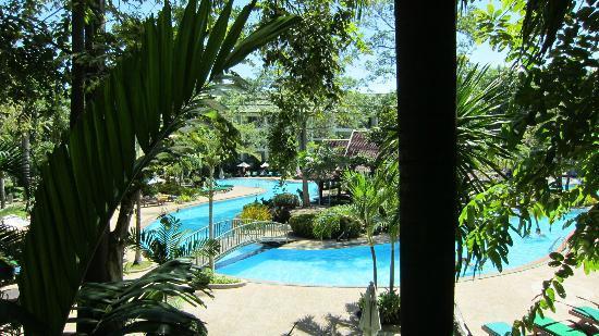 Green Park Resort: スタンダードルームは全てプールビュー