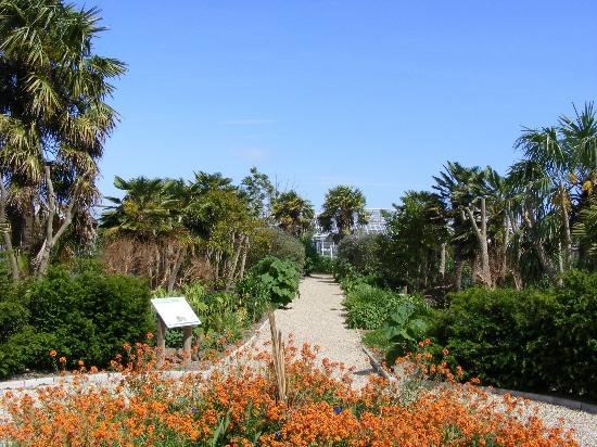 Walled Gardens of Cannington: Sub-tropical walk