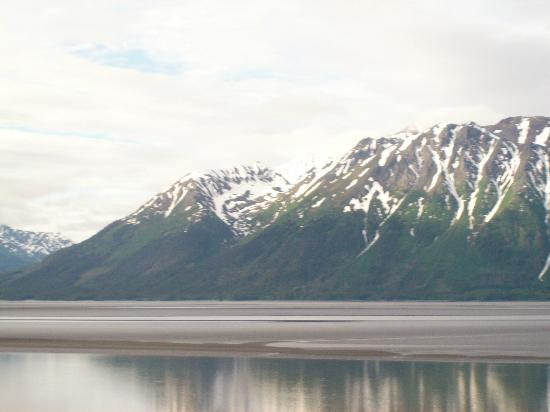Best Western Plus Edgewater Hotel : Lots of great views in Seward, AK