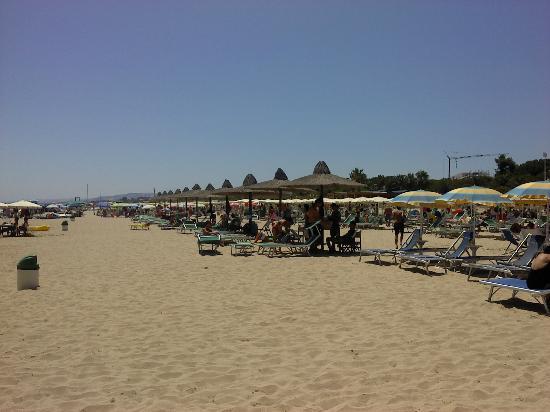 Hotel Venezia : Plage, spiaggia....