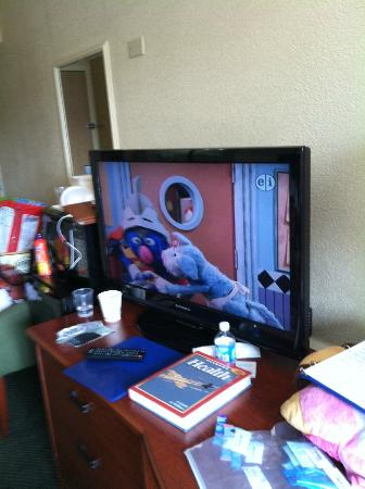 Quality Inn: TV