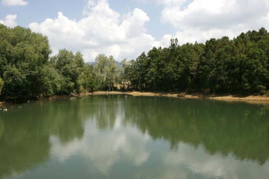Podere Sant'Angelo: The lake on the property where you can fish