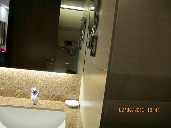 Garden Orchid Hotel: vanity mirror