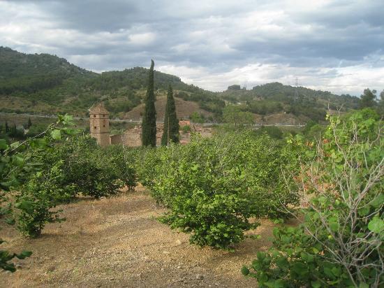 Les Velles Escoles: surroundings, up in the village