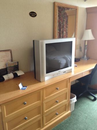 Pleasant Stay Inn: tv