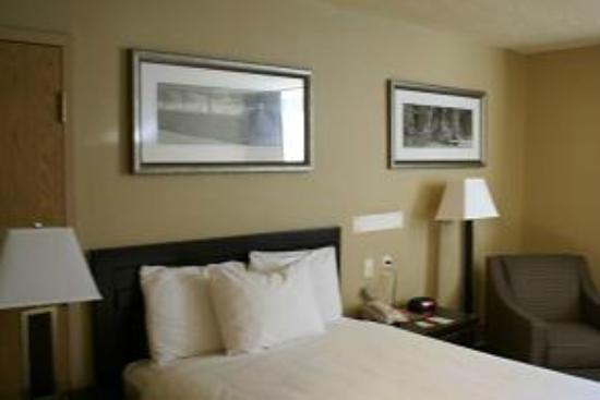 Stonebridge Hotel Fort McMurray: New Decor