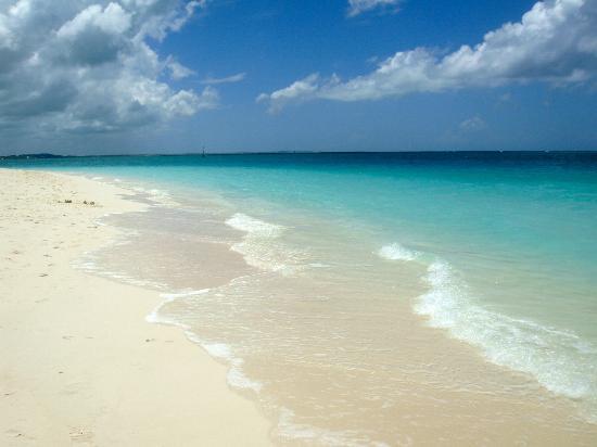 بوينت جريس: The beach is SO clean, very private 