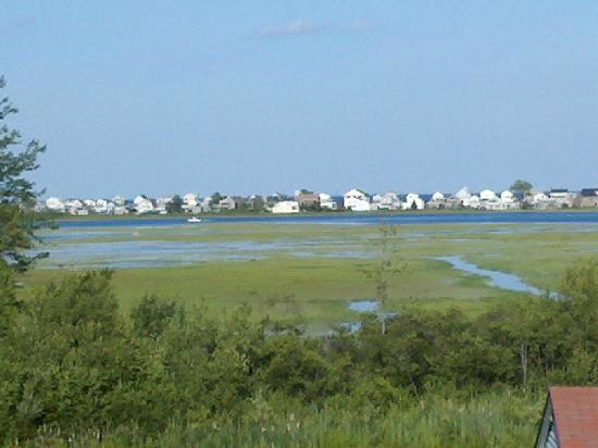 Belle of Maine: View from our screen porch, salt marsh at high tide