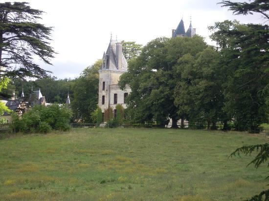 Chateau de Ternay: Chateau2