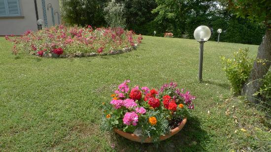 Il Casale Del Madonnino: Garden