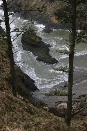 Cape Disappointment State Park: View of water from trail to lighthouse