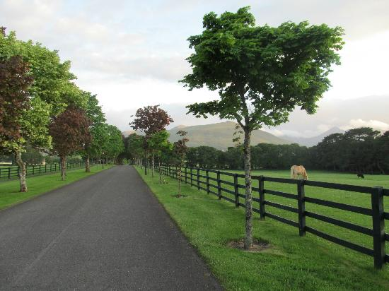 The Dunloe : front drive