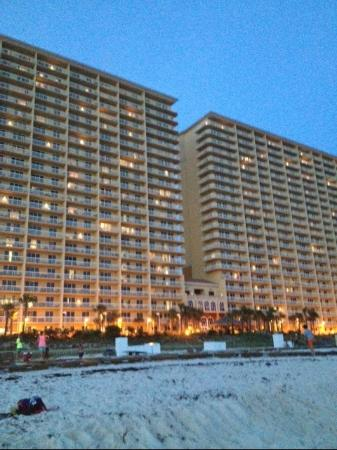 Calypso Resort & Towers: Calypso Evening Shot