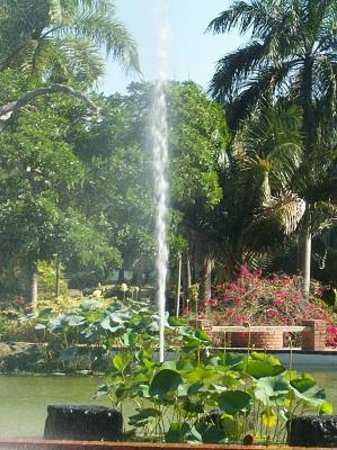 Jardin botanico nacional bild von national botanical for Jardin botanico nacional