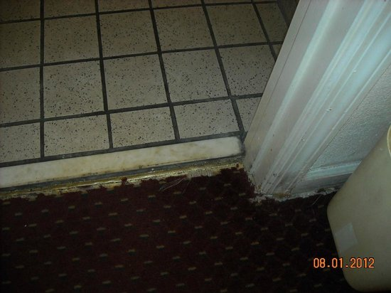 Motel 6 Cookeville: bathroom door