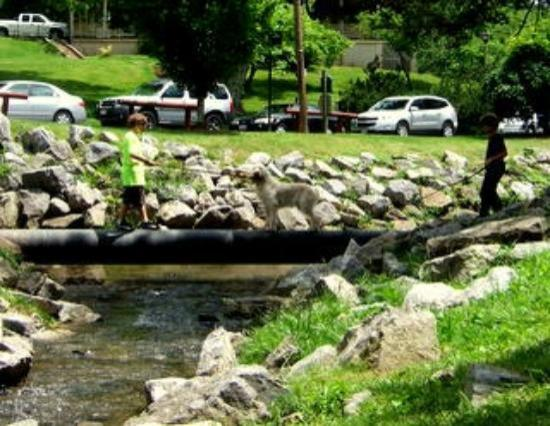 Staunton, VA: Coaching poochie to cross the water on the pipeline!