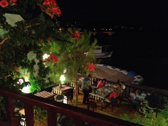 """Lipsi, Grèce : Il pino e cioè il """"Pefko"""""""
