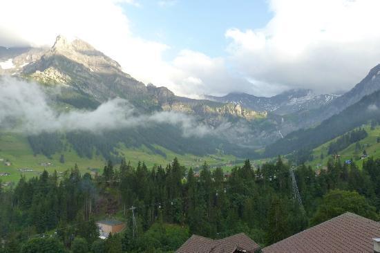 Hotel Steinmattli: view