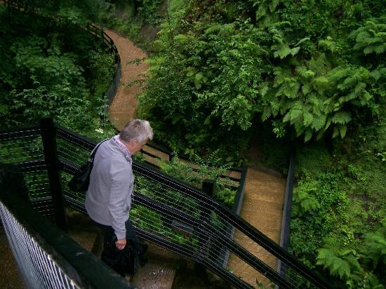 Shanklin Chine : Some steps but not too much for mum