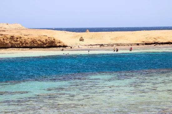 Gebel El Rosas: Spiaggia oltre il diving