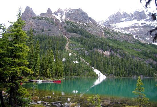 Lake O Hara Hiking Alpine Holidays Banff Alberta