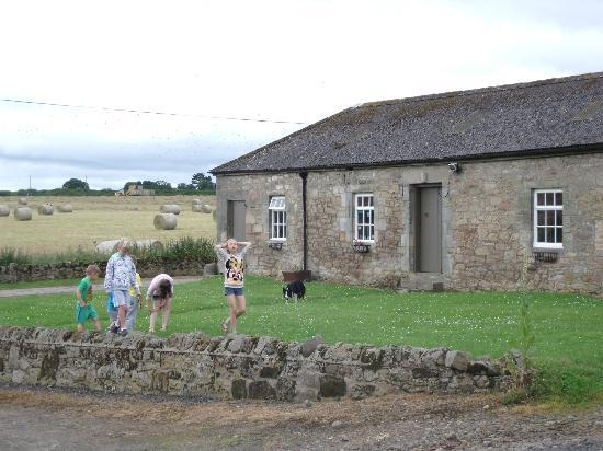 Doxford Farm Cottages: Children playing opposite the cottages