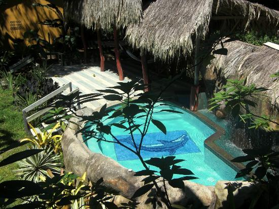 Cariblue Hotel : Jacuzzi Garden