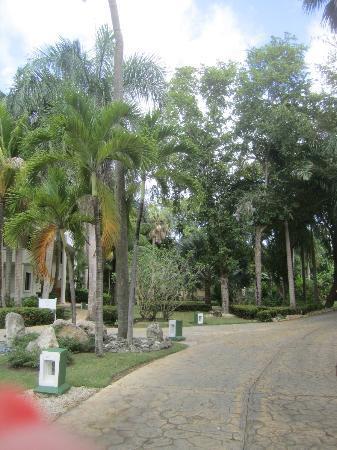 Paradisus Punta Cana Resort: Activity area. Archery, ping pong, bike riding, rock climbing 