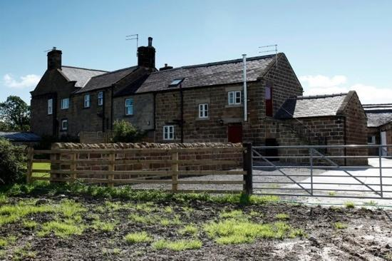 The Cud Life: back of cottages