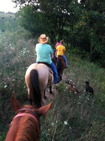 KD Guest Ranch: Trail Ride