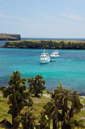 Galapagos Alternative: Boats near South Plazas