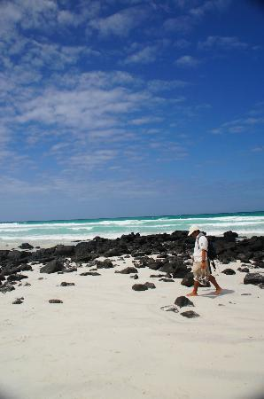 Galapagos Alternative: The beautiful beaches near Tortuga Bay on Santa Cruz