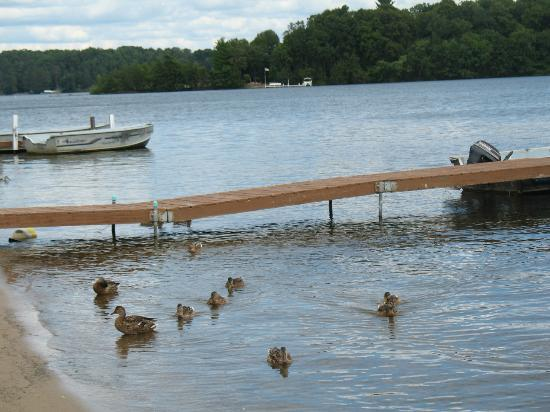 Cragun's Resort on Gull Lake: Lots of water all around.