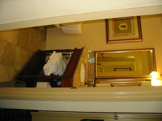 Hampton Inn Atlanta - Northlake: Bathroom