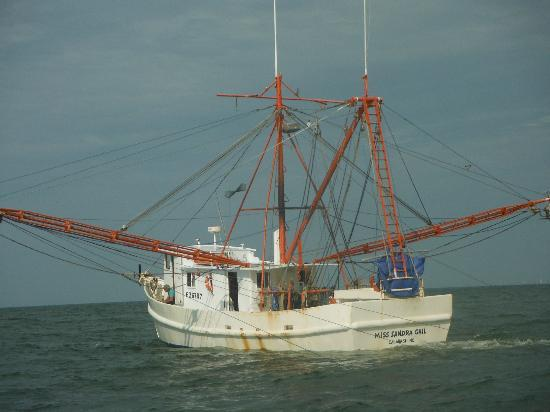 1000  images about Shrimp Boats on Pinterest